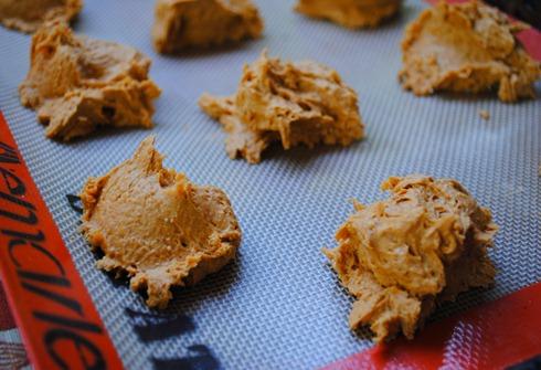 pumpkin spice cookies 026