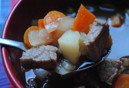 beef stew 023