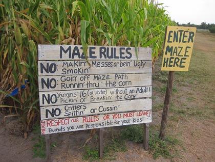 corn maze 007