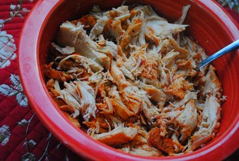 salsa chicken 021