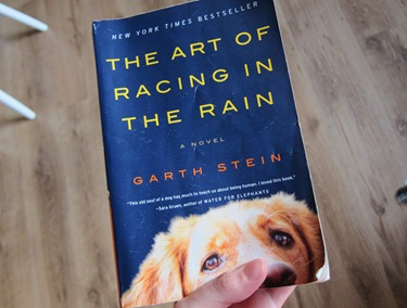 art of racing in the rain 007