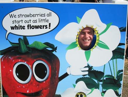 strawberry festival 039