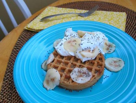 waffle with yogurt 043