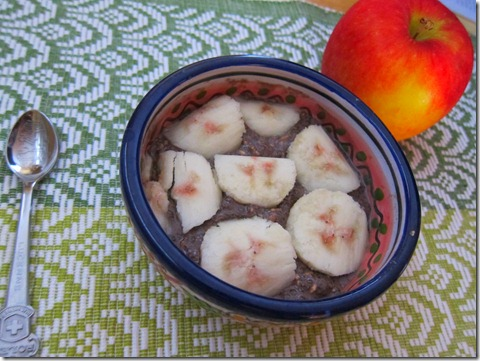 chocolate chia seed pudding 005