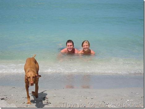dog photo bomb