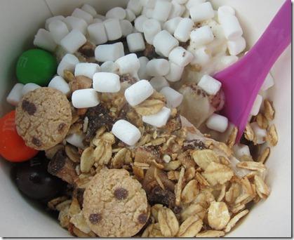 mochi frozen yogurt