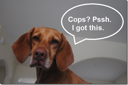 sadie cops