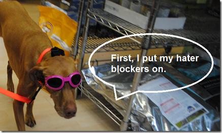 sadie hater blockers