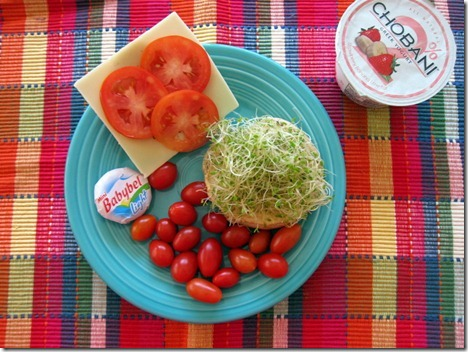 hummus sandwich 005