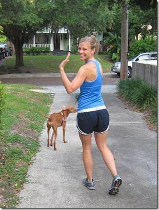 walking with sadie