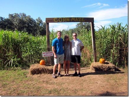 corn maze 017