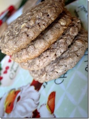 cocoa oatmeal cookies 051