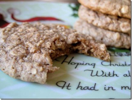 cocoa oatmeal cookies 056