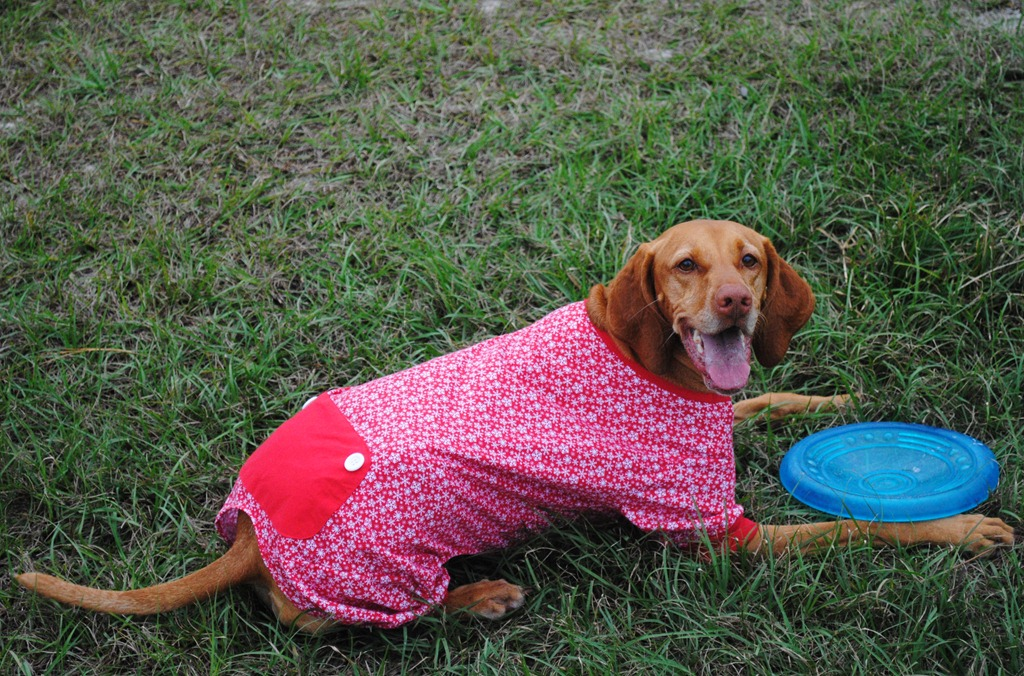Dog Christmas Pajamas Target dog pajamas red 046
