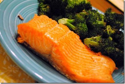 salmon 062-1