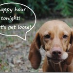 happy hour get loose (2)