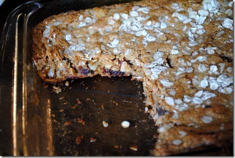 oatmeal date almond bars 019