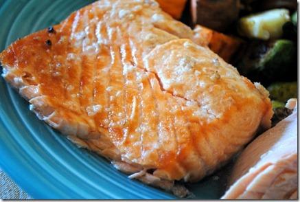 salmon 015-1