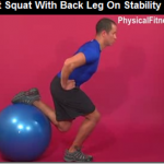 split squat stability ball