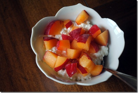 cottage cheese with apricot