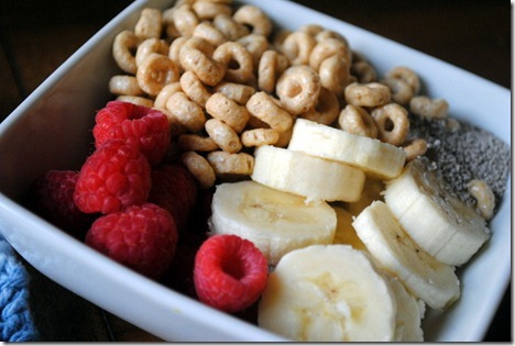 greek yogurt breakfast bowl 007