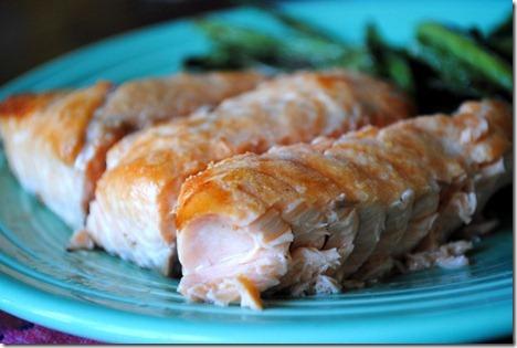 salmon 005