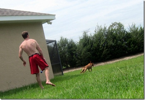 guy and dog playing fetch