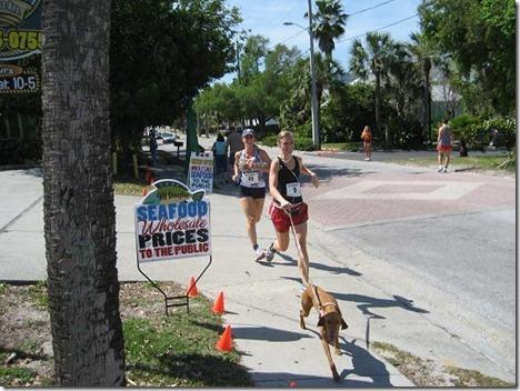 running with sadie