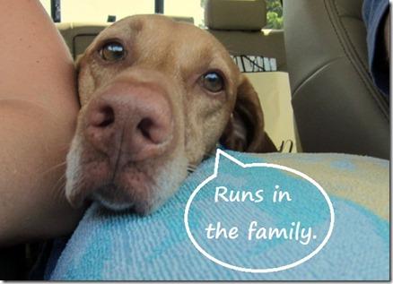 runs in the family