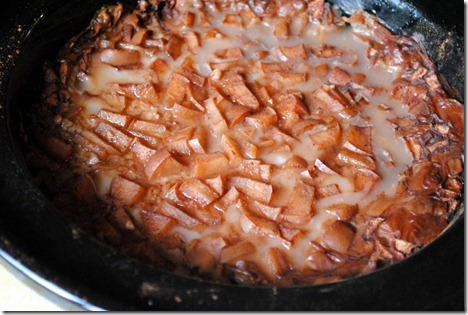 apple cinnamon steel cut oatmeal 004