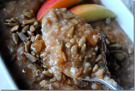 apple cinnamon steel cut oatmeal 024