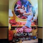 katy perry 3d 017