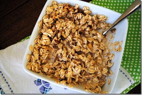 oatmeal 025