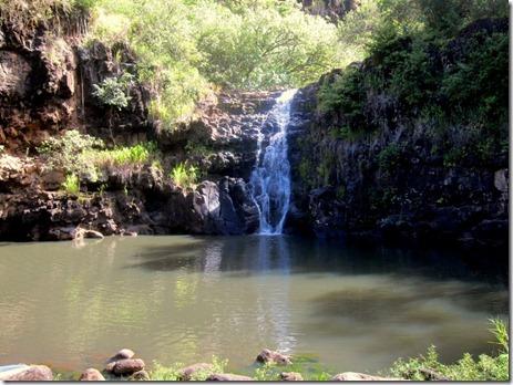 waimea falls 014
