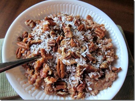 crock pot steel cut oats 007