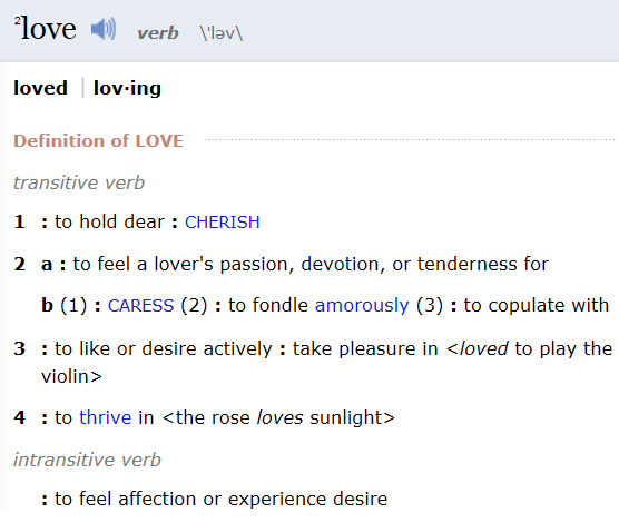 Love Is A Verb.png