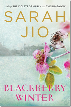 blackberry winter sarah jio