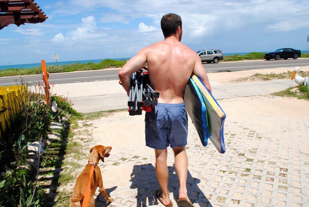 Dogs Beach in Florida Dog Friendly Florida Beach