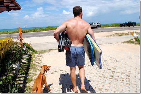 dog friendly Florida beach