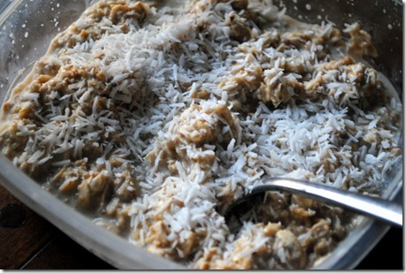 overnight oats with shredded coconut