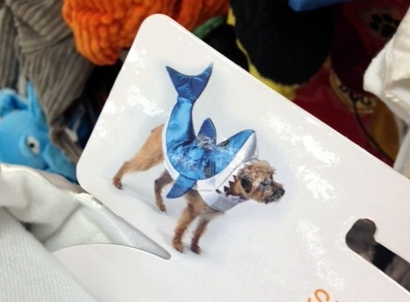 Shark Halloween Costume