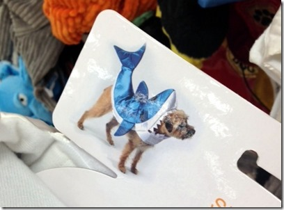 Shark Halloween Costume for Dog