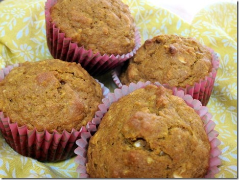 Pumpkin Oatmeal Muffin