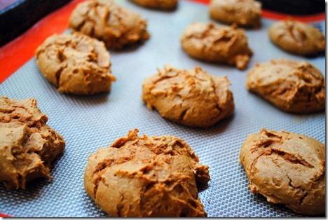 Two Ingredient Pumpkin Cookies