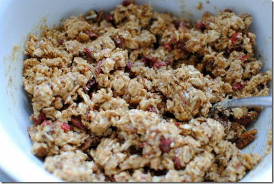 Homemade No Bake Granola Bars