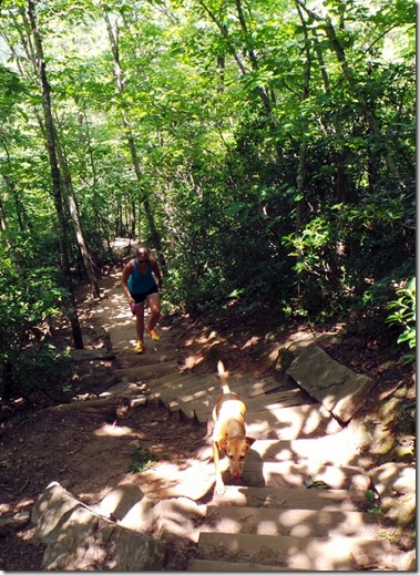Crowders Mountain Stairs