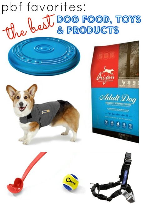 Best Dog Food, Toys and Products For Your Dog