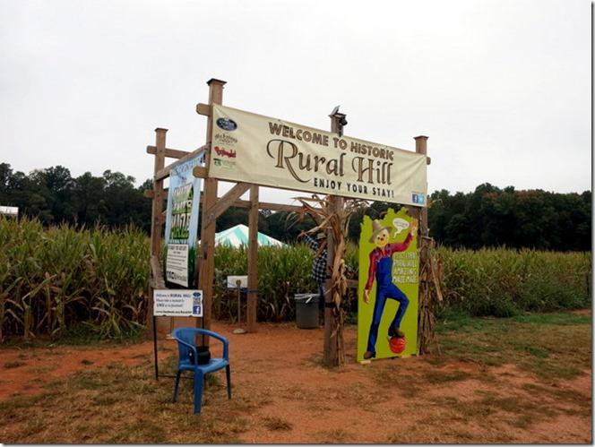 Corn Maze Rural Hill