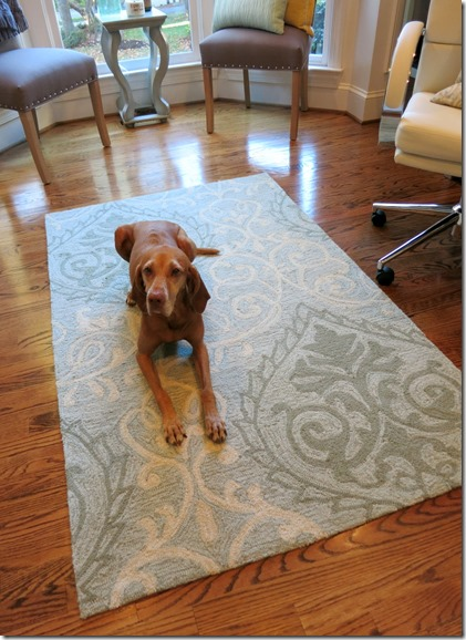 Home Office Rug