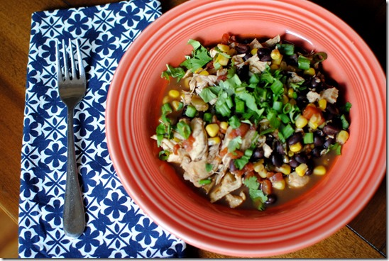 Skinnytaste Crock Pot Santa Fe Chicken Recipe